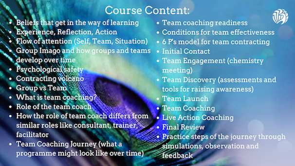 Certificate in Team Coaching Course Content