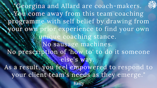Course Testimonial for Certificate in Team Coaching